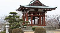 Alpha, withother Burnaby Schools, isorganizing a Cultural Experience School Trip to Asia for 11 days next spring: March 10-20, 2017. The program, organized by Jade Tours, is designed to give […]