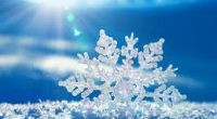 With the latest arrival of snow, we want to remind parents/guardians, students, and staff about Burnaby School District weather related school closure announcements.All schools will remain OPEN, unless there is […]